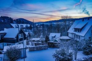 2019 01 La neige est là ! -  Hans Georg Bette